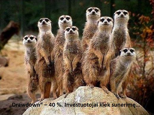 investuotojai_sunerime