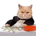 kaip valdyti savo finansus