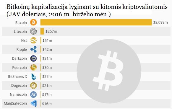 bitkoinai ir kitos kriptovaliutos