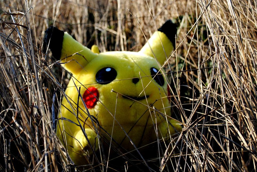 kaip-uzdirbti-is-pokemonu-jeigu-tu-treideris